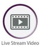 Graphic-Icon-Website-video